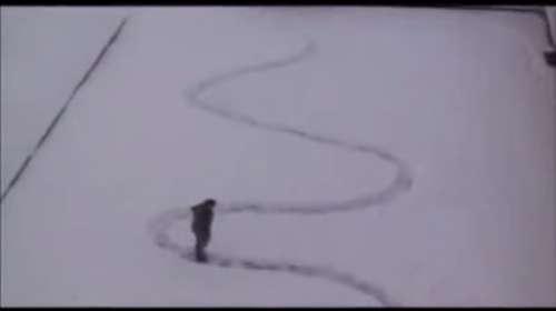 Cómo trolear a tus vecinos tras una fuerte nevada